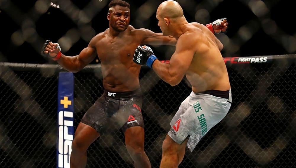 Камерунский Хищник нокаутировал прежнего чемпиона UFC впервом раунде